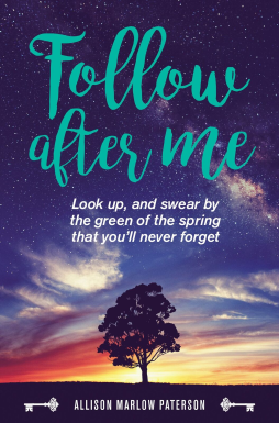 Follow after Me Cover final (1)