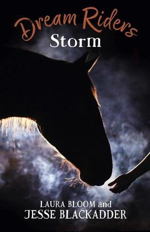 Storm Dream Riders 2 cover